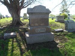 Baby Burr