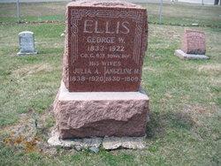 Julia A Ellis