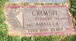 Theodore Tex Grimste
