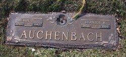 Bernice M <i>Walters</i> Auchenbach