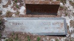 Nellie <i>Morris</i> Brown