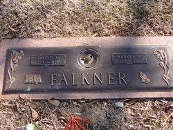David Joel Falkner