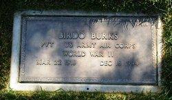 Birdo Burks