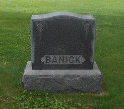 Amelia <i>Scheffler</i> Banick