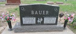 Norbert Henry Bauer