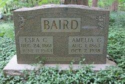 Amelia Garner <i>Tichenor</i> Baird