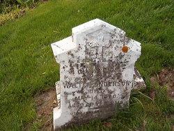 Walter Anderson