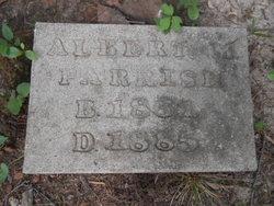 Albert Al Parrish