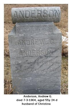 Andrew G Anderson