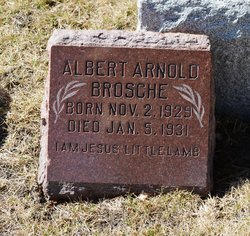 Albert Arnold Brosche