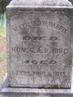 Maynard Harris