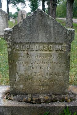 Alphonso M. Amazeen