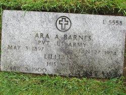 Ara A Barnes