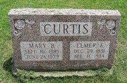 Elmer Ellsworth Curtis