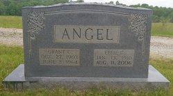 Grant Coit Angel