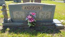 Mary Sue <i>Moore</i> Anderson