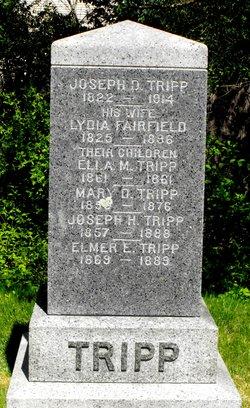 Lydia <i>Fairfield</i> Tripp