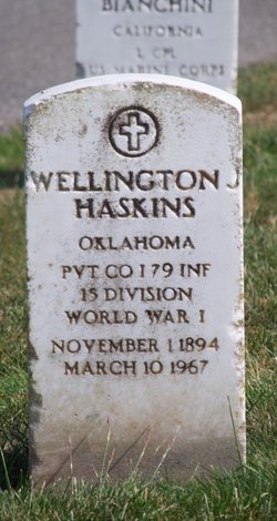 Wellington James Haskins