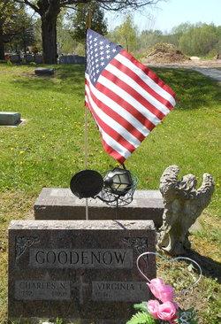 Charles N Goodenow