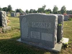 Stephen Grosner