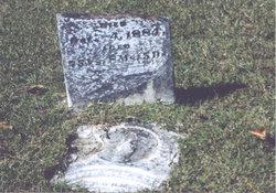 David A. Kimbrell