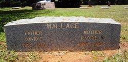 Rachel R <i>Hester</i> Wallace