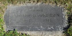 Andrew H Andersen