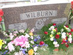 Dorland Wilburn