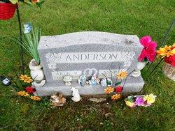 Annie L <i>Scott</i> Anderson