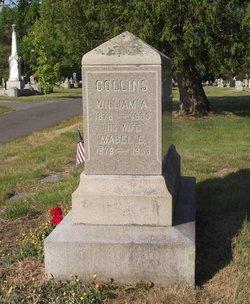 William Auretus Collins