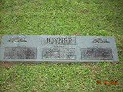 Paul Otis Joyner