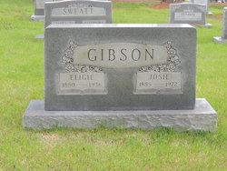 Elijah Gibson