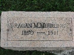 Ragan M Mehrling