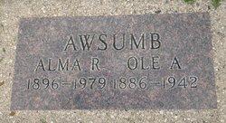 Alma Regina <i>Christofferson</i> Awsumb