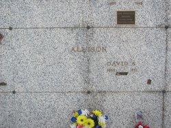 David A. Allison