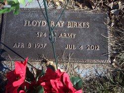 Floyd Ray Birkes