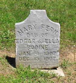 Mary Fern Bodine