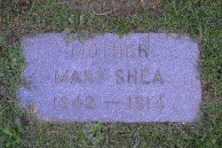 Mary Donovan Shea