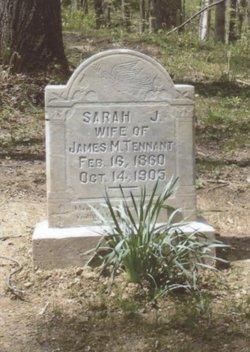 Sarah Jane <i>Wright</i> Tennant