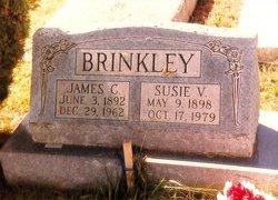 Susan Virginia <i>Liptrap</i> Brinkley