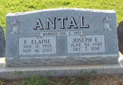 Joseph Egnatz Joe Antal