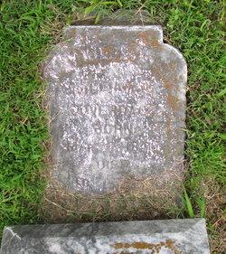 William H Coverdale
