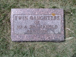 Twin Daughters Arneson