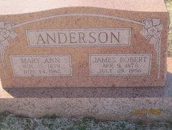 Mary Ann <i>Bolinger</i> Anderson