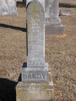 Martha Ann <i>Adams</i> Bandy