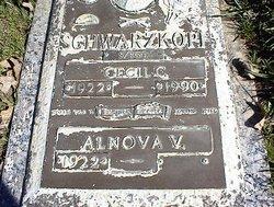 Alnova V. <i>Bell</i> Schwarzkopf