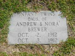 Infant Twin Daughters Brewer