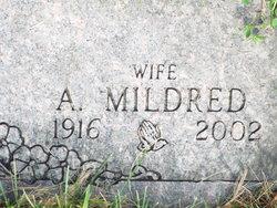 Artist Mildred Midge <i>Taylor</i> Rupp