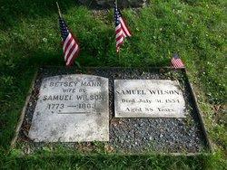 Samuel Uncle Sam Wilson