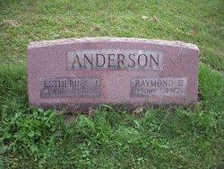 Raymond D. Anderson
